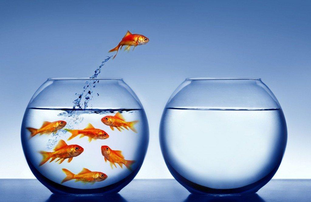 Devenez un entrepreneur-leader MLM